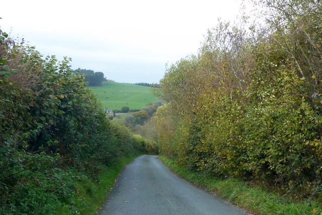 Lane towards Hooke and Beaminster