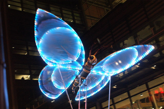 View of a butterfly in the lantern parade of Light Up The Night #2