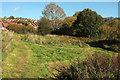 SX8966 : Green open space by Centenary Way by Derek Harper