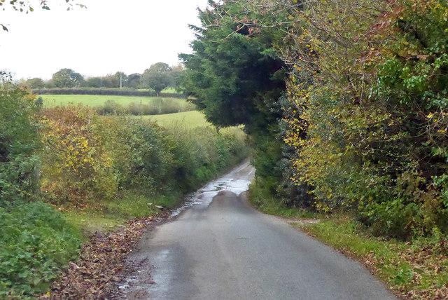 Damp spot on lane