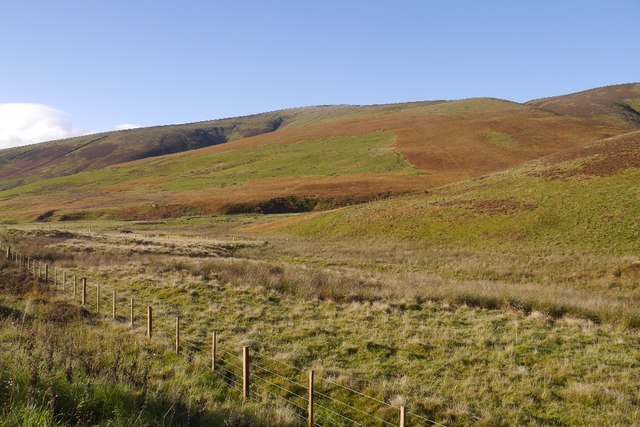 Rough pasture beside the Gill Burn