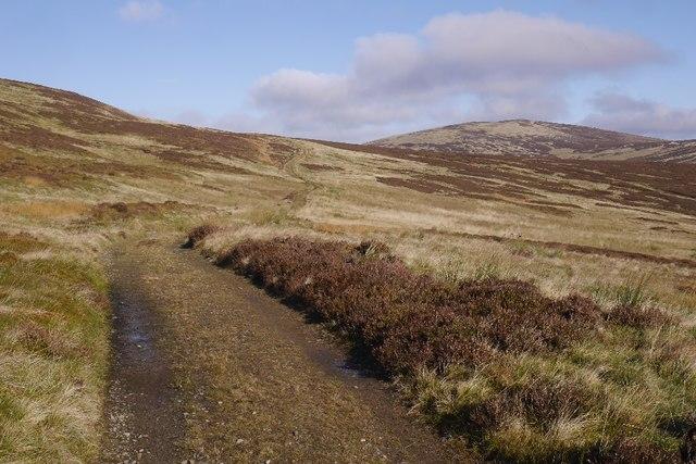 Track over Black Rig