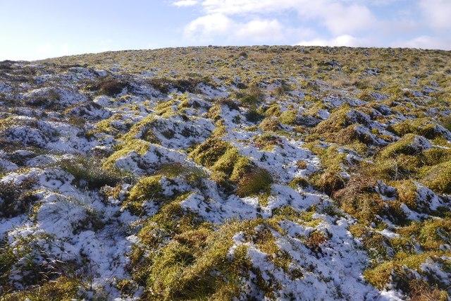 Mossy ground, Greenside Law