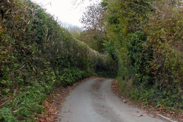A lane called Lovelands