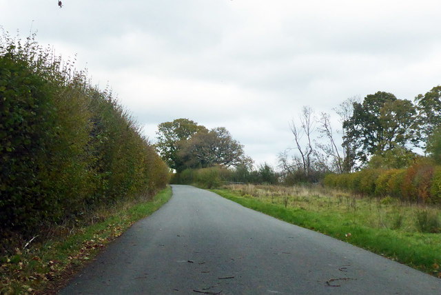 Road towards Halstock and Yeovil