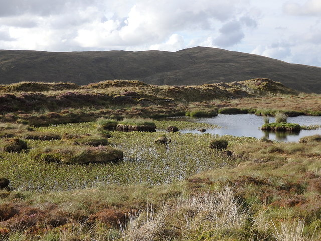 Boggy pond on the slope of Pumlumon Fawr