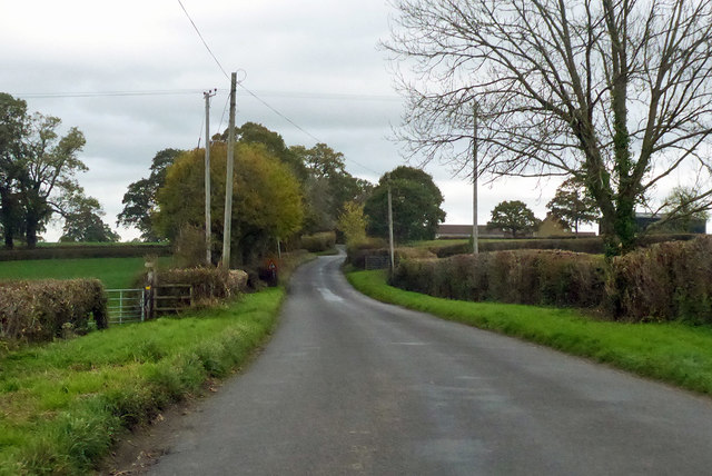 Road from Halstock towards Yeovil