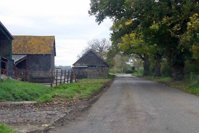 Road by Davole Farm