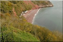 SX9265 : Babbacombe, view by Mike Faherty