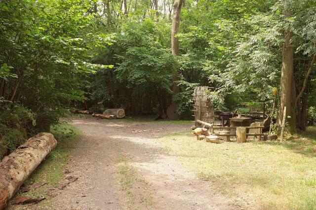 Junction, Grovely Woods