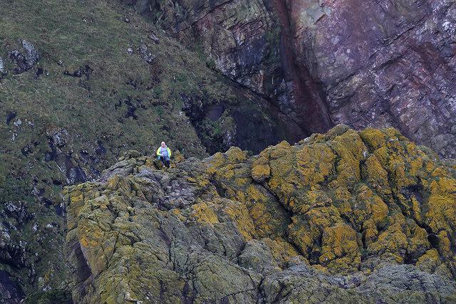 St Abb's Head rocks