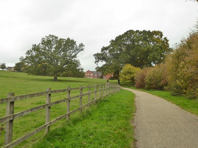Path along foot of Wyndham Hill, Yeovil