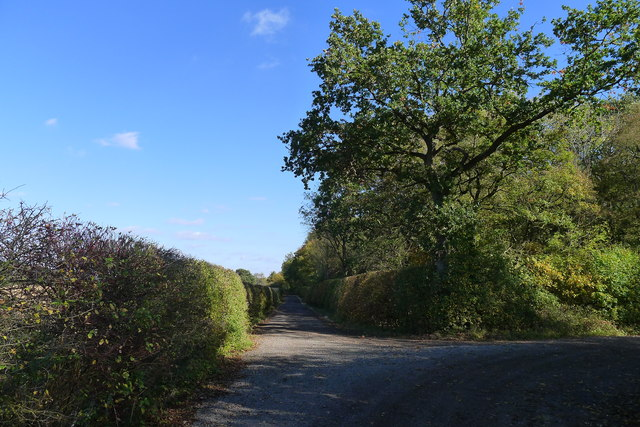 The old road to Pickworth passing Empingham Old Wood II
