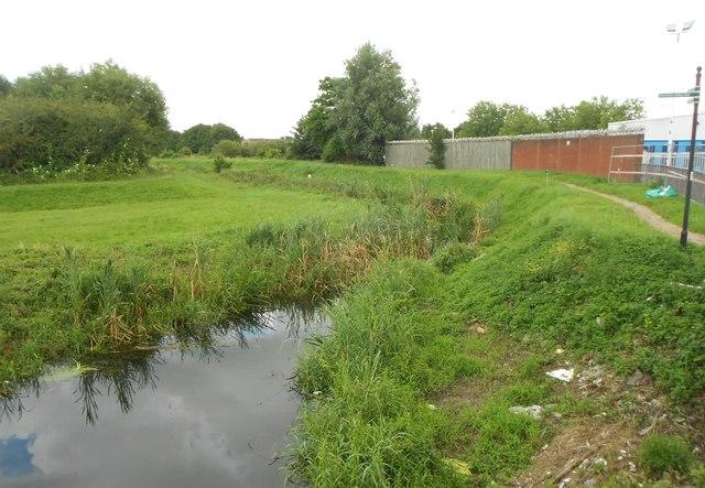 Ingrebourne River in Rainham (1)
