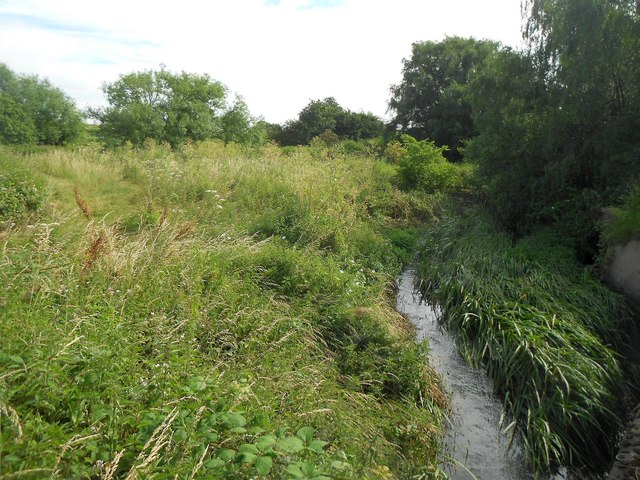 Ingrebourne River in Rainham (3)