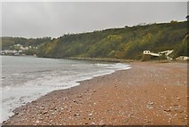 SX9265 : Babbacombe, beach by Mike Faherty