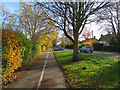TL4357 : On Barton Road cycle path by John Sutton
