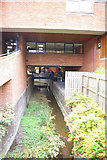 TL4358 : Cambridge: the Bin Brook passing through Robinson College by Christopher Hilton