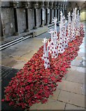TA0339 : 2018  Remembrance  display  Beverley  Minster by Martin Dawes