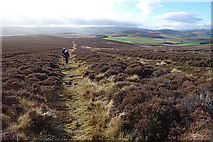 NJ1823 : Walkers on the Tomintoul Spur of the Speyside Way by Anne Burgess