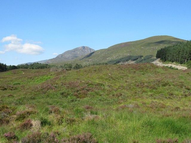 Moorland in Glen Affric