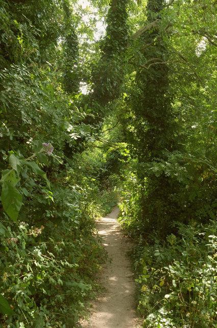 Path, South Parks
