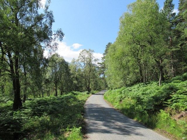 Road beside Loch Beinn a' Mheadhoin