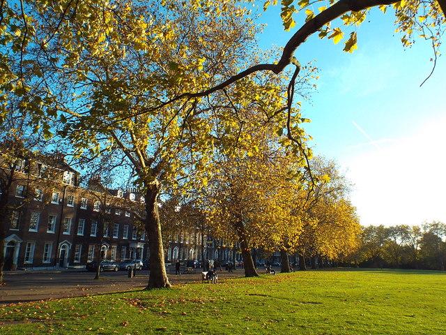 Autumn colour on Highbury Fields