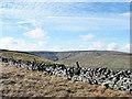 NY9035 : Dry stone wall along moorland ridge by Trevor Littlewood