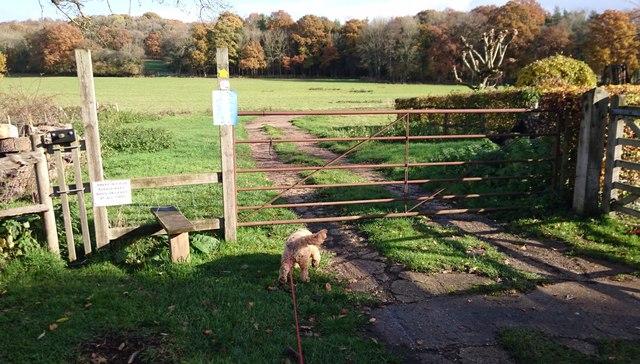 Gate onto Farmland