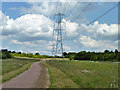 TQ5690 : Power line across Pages Wood by Robin Webster