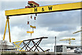 J3575 : Goliath lifting, Belfast - November 2018(1) by Albert Bridge