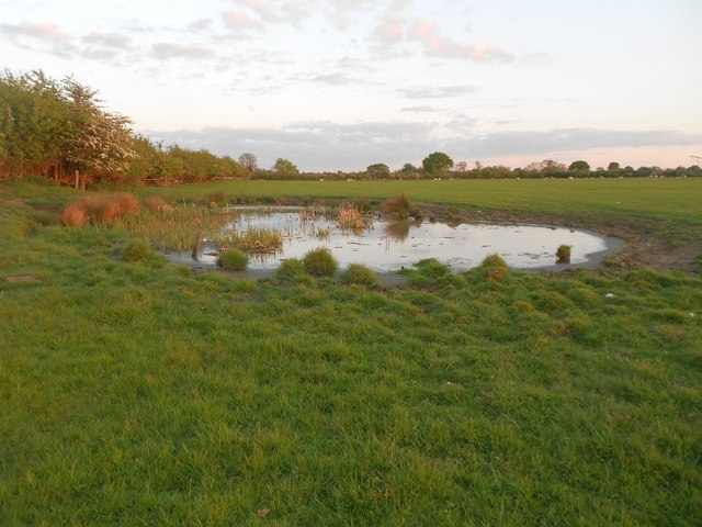 Napton on the Hill: Pond by Lock Number 11, Oxford Canal