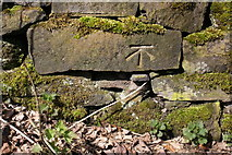 SE0026 : Benchmark on wall at approach to Carr Bridge by Roger Templeman