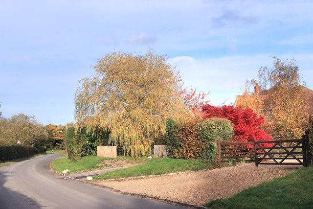 Seasonal Colours, Harvest Hill