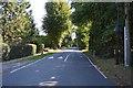 TQ0893 : Sandy Lodge Lane by N Chadwick