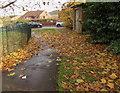 ST3090 : Fallen leaves on a path, Malpas, Newport by Jaggery