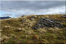 NJ2031 : Strathavon Psammite by Anne Burgess