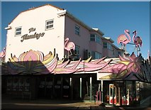 TG5307 : The Flamingo by Evelyn Simak