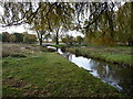TQ1669 : Outflow from Leg of Mutton Pond, Bushy Park by Christine Johnstone