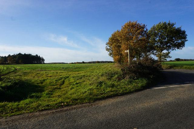 Fingerpost on Northfield Lane