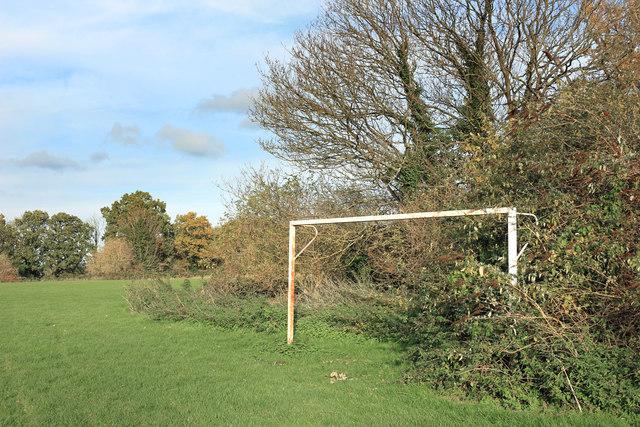 Overgrown Goalpost
