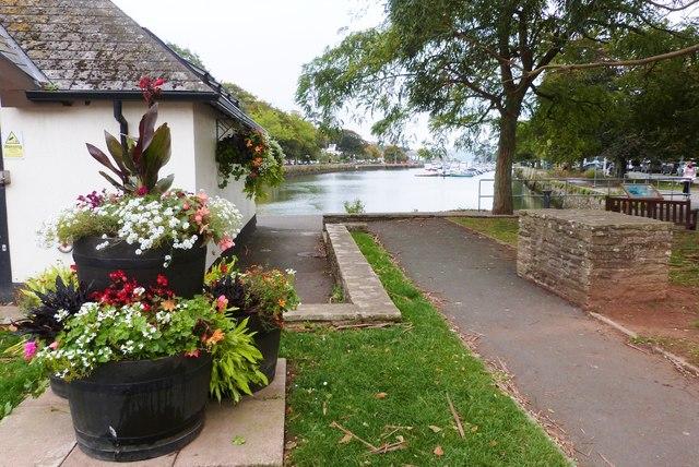 Harbour-side floral display, Kingsbridge