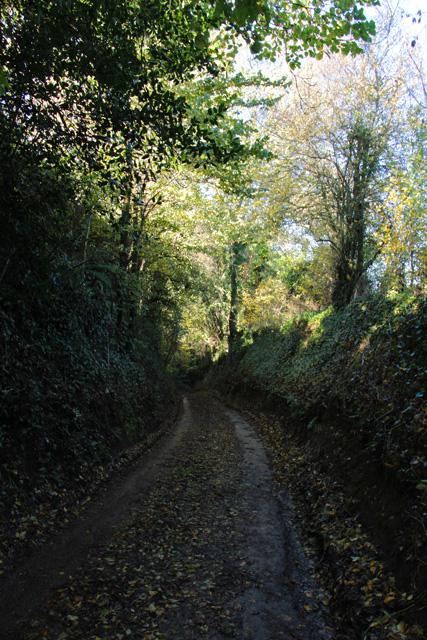 Farm road between Shell's Farm and Barrington