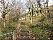 SS9389 : Steps up to Sunnyside, Ogmore Vale by Jaggery