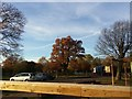 TQ2174 : Roehampton Gate car park by David Howard