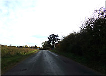 TL8928 : Chappel Hill, Wakes Colne by Adrian Cable