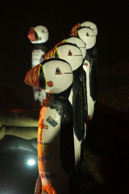 The Unstfest Puffins at the Saxa Vord beacon lighting
