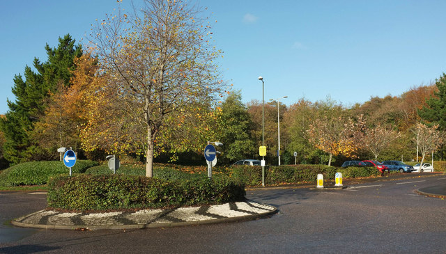Roundabout, The Willows
