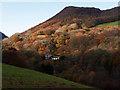 SN7278 : Rheidol Cottage just catches the mid-November sunshine : Week 46